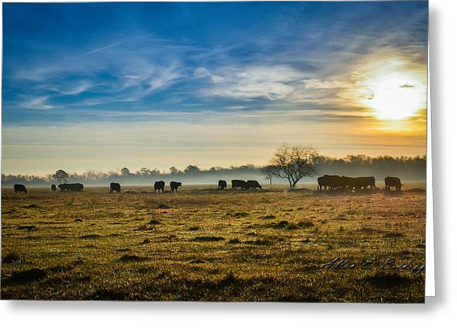 Greeting Card featuring the photograph Texas Crisp Winter Morning by Allen Biedrzycki
