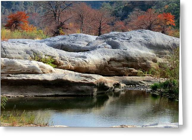 Greeting Card featuring the photograph Texas Fall Colors by David  Norman