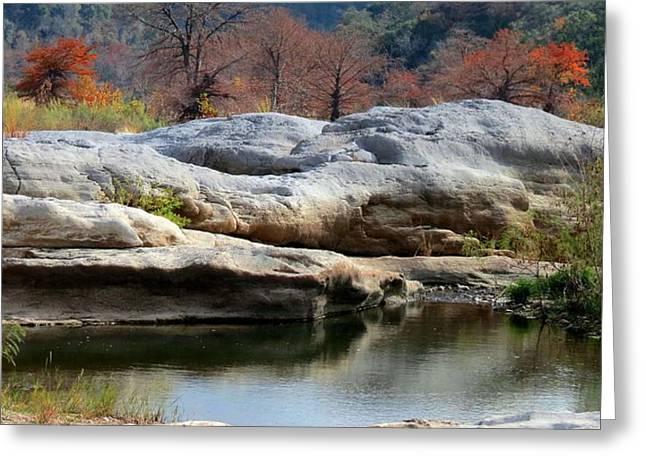 Texas Fall Colors Greeting Card by David  Norman