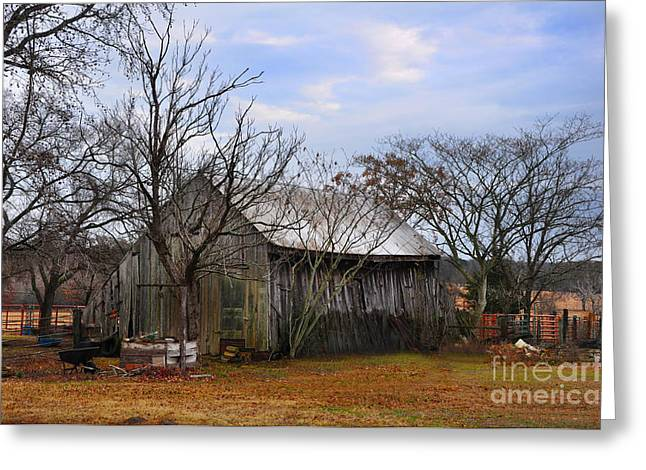 Texas Farm Greeting Card by Stuart Mcdaniel