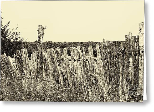 Texas Fence In Sepia Greeting Card