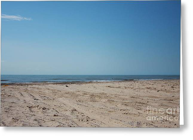 Texas Gulf Series Greeting Card by Delaine Miller Sweat