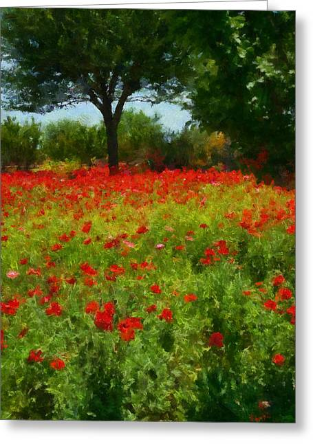 Texas Hill Country Corn Poppies Greeting Card by Michael Flood