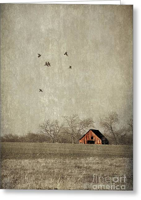 Texas Landscape Greeting Card