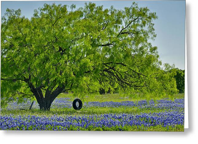 Greeting Card featuring the photograph Texas Life - Bluebonnet Wildflowers Landscape Tire Swing by Jon Holiday