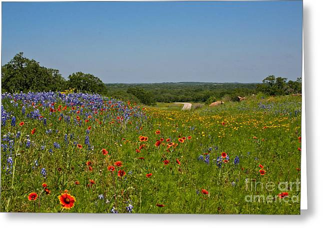 Texas Roadside Bling Greeting Card