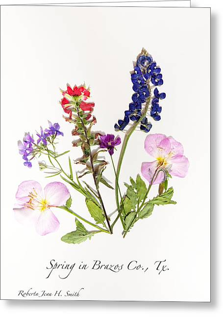 Texas Spring Flowers Greeting Card