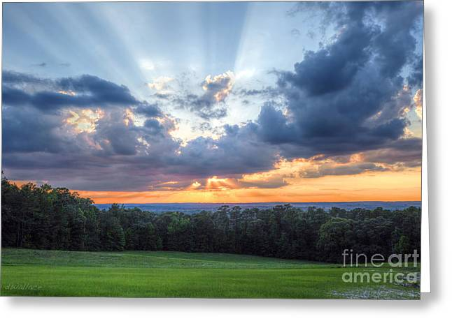Texas Sunset As Seen From Louisiana Greeting Card by D Wallace