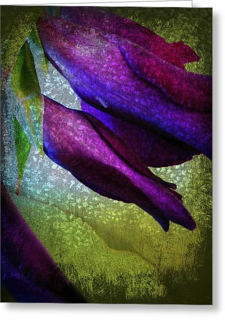 Textured Gladiola Buds Greeting Card by Shirley Sirois