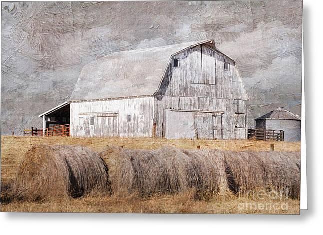 Textured Missouri Barn  Greeting Card by Liane Wright