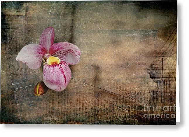 Greeting Card featuring the photograph Textured Orchid by Vicki DeVico
