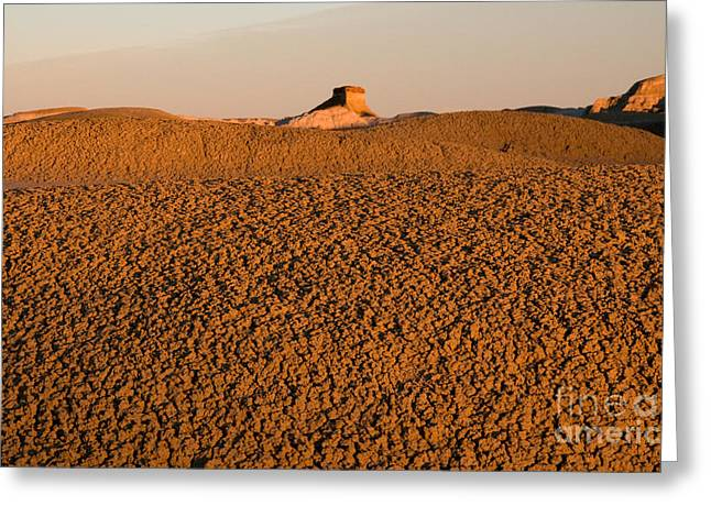 Textures In The Bisti Wilderness Greeting Card by Vivian Christopher