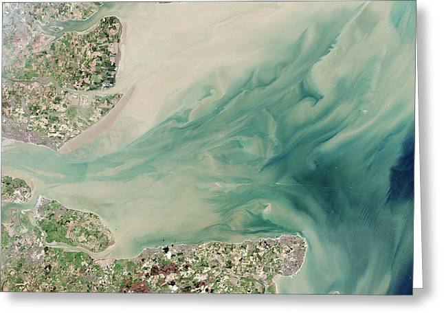 Thames Estuary Greeting Card by Nasa