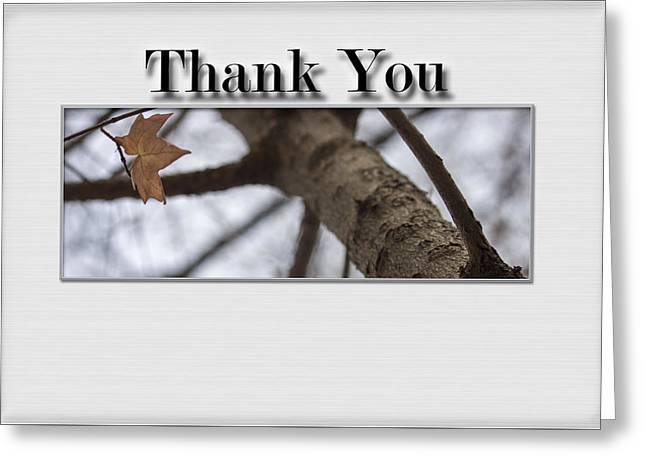 Thank You Card - Saving The Last Moment Greeting Card by Becca Buecher