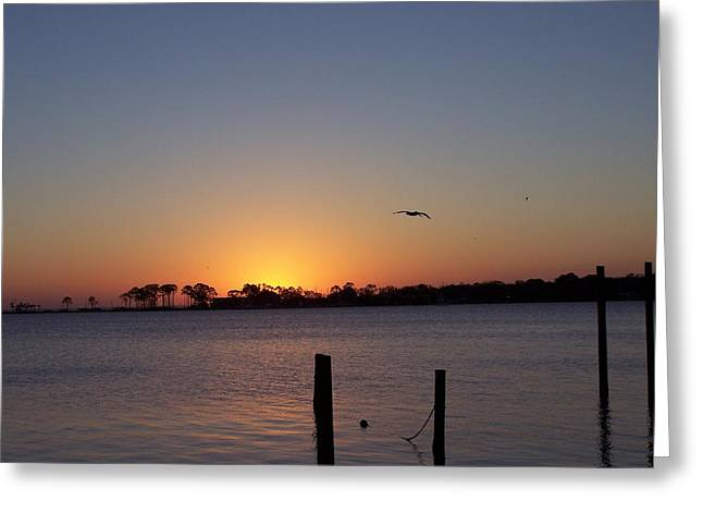 Greeting Card featuring the photograph Thanksgiving Sunrise by Michele Kaiser