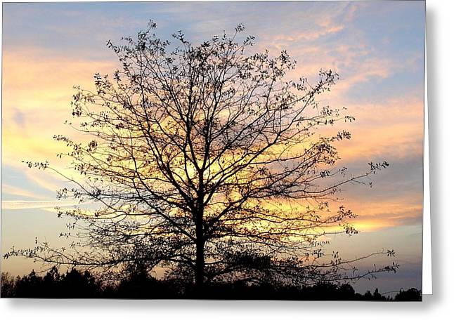 Thanksgiving Tree Greeting Card by EG Kight