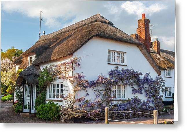 Thatched Cottage In Otterton Devon Greeting Card by David Ross