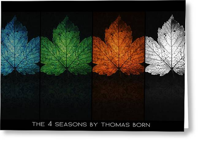 The 4 Seasons By Thomas Born Greeting Card by Thomas Born