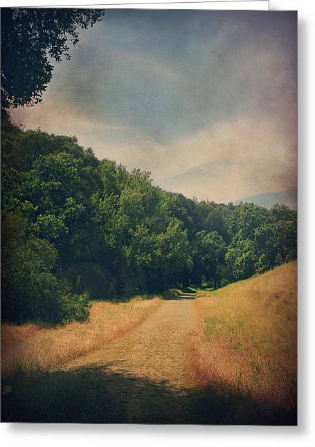 The Adventure Begins Greeting Card by Laurie Search