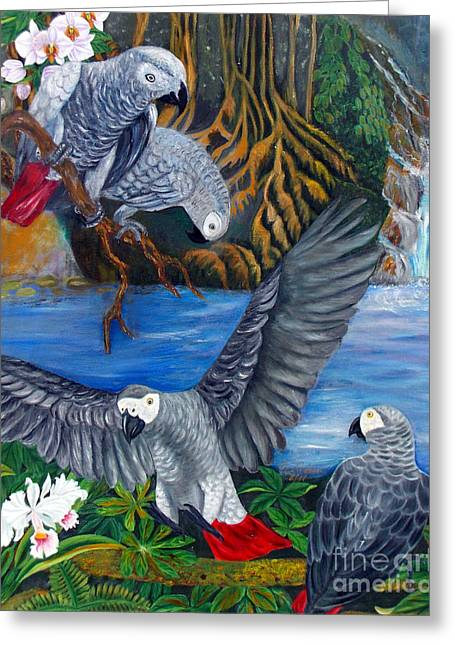 The African Grey Parrots Greeting Card
