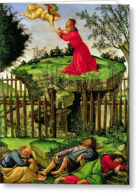 The Agony In The Garden, C.1500 Oil On Canvas Greeting Card by Sandro Botticelli