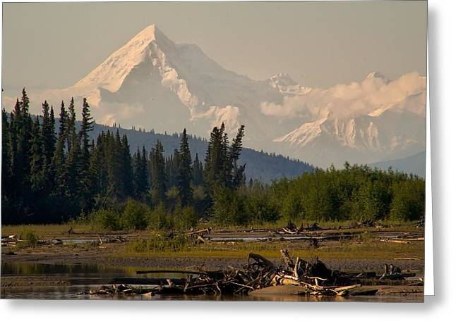 Greeting Card featuring the photograph The Alaska Range At Mount Hayes by Michael Rogers