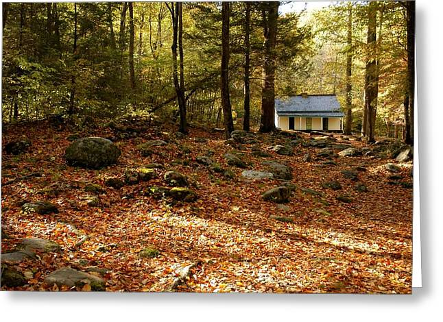 The Alfred Reagan Cabin Autumn Greeting Card by John Saunders