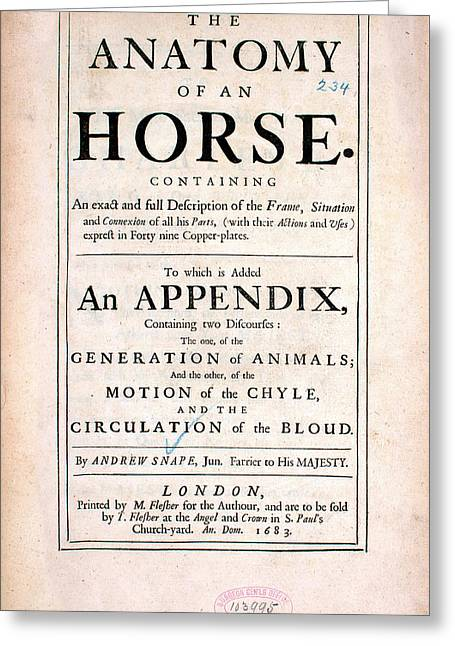The Anatomy Of An Horse (1683) Greeting Card