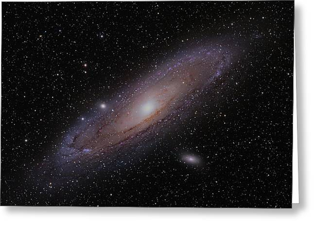 The Andromeda Galaxy Greeting Card by Brian Peterson
