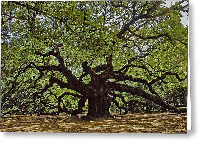 The Angle Oak Greeting Card