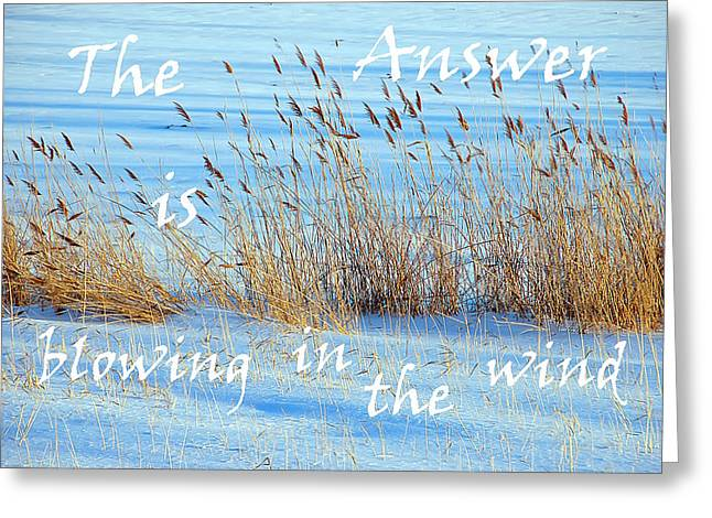 The Answer Is Blowing In The Wind Greeting Card by Aimee L Maher Photography and Art Visit ALMGallerydotcom