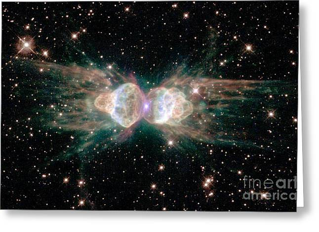 The Ant Nebula Mz3 Greeting Card by Science Source