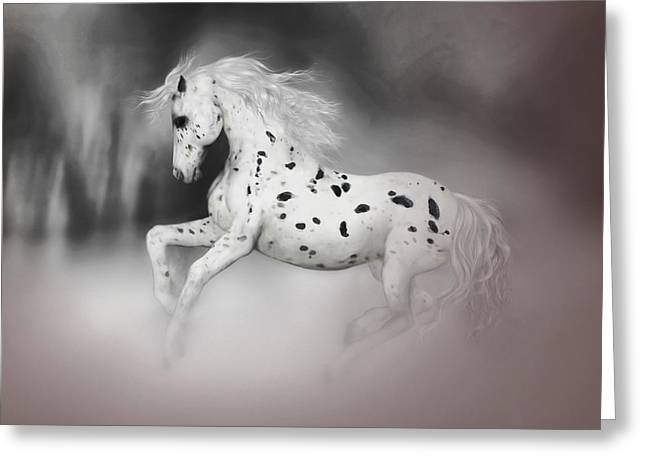 The Appaloosa Greeting Card
