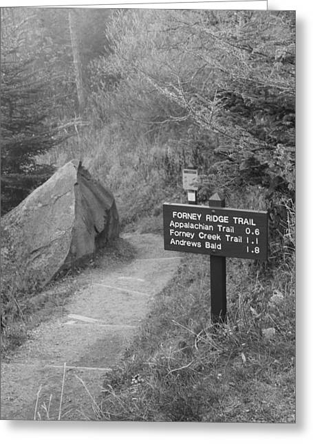 The Appalachian Trail Greeting Card by Dan Sproul