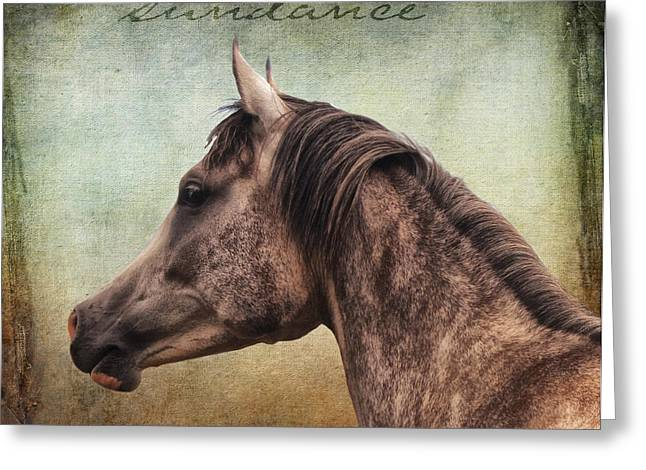 The Arabian Sundance Greeting Card