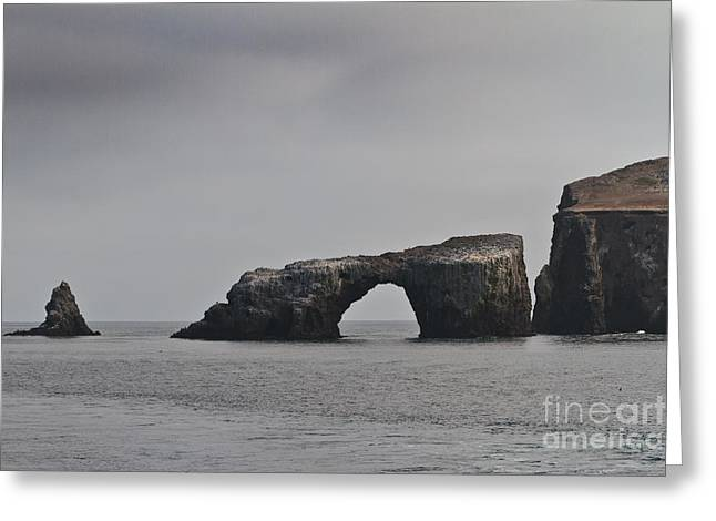 The Arch At Anacapa Island Greeting Card by Mitch Shindelbower