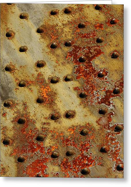 The Arid Plains Of Rust Greeting Card by Charles Lucas