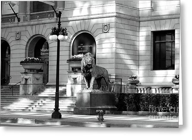 The Art Institute Of Chicago Greeting Card by John Rizzuto