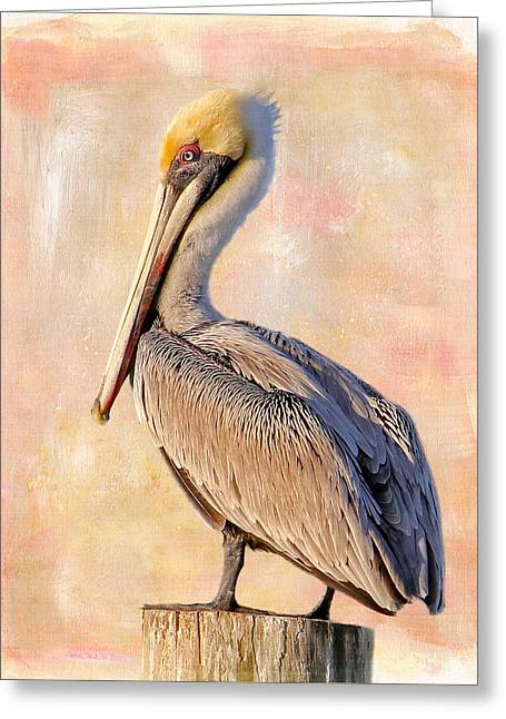 Birds - The Artful Pelican Greeting Card