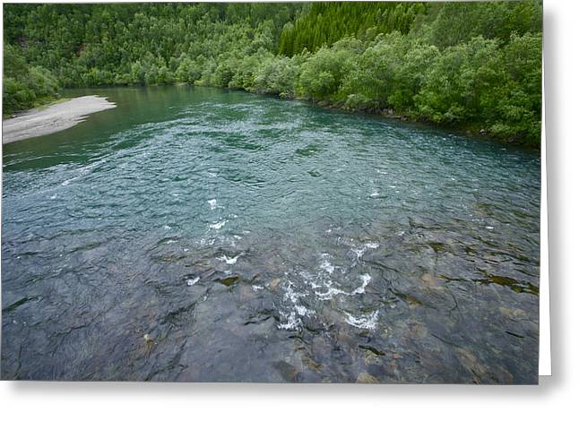 The Atlantic Salmon Rivers Of Norway .junkerdal.  Holidays 2012. Greeting Card by  Andrzej Goszcz