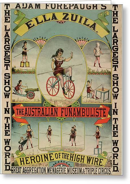The Australian Funambulist. Greeting Card by British Library