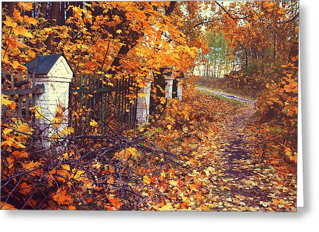 The Autumn Path Aside Old Fence Greeting Card by Jenny Rainbow