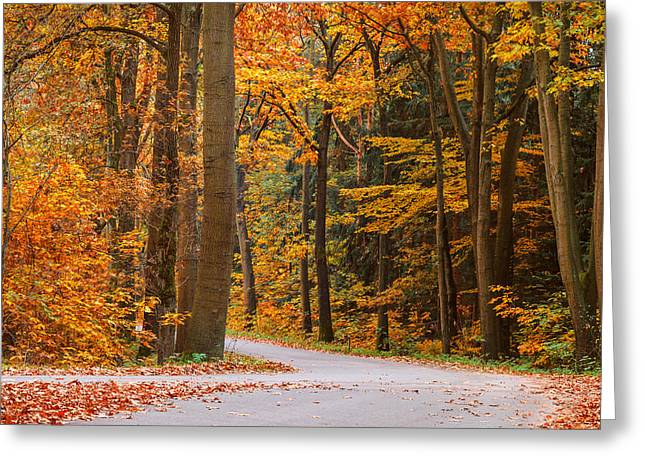 The Autumn Road Greeting Card by Martin Bergsma