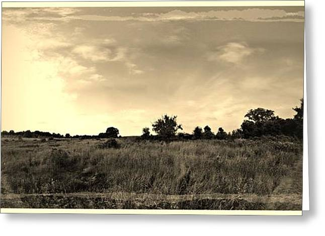 The Back Pasture Greeting Card by Garren Zanker