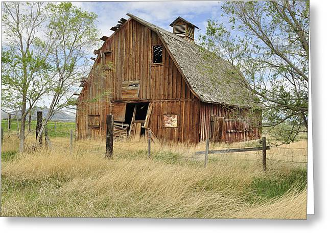 Greeting Card featuring the photograph the Barn  by Fran Riley