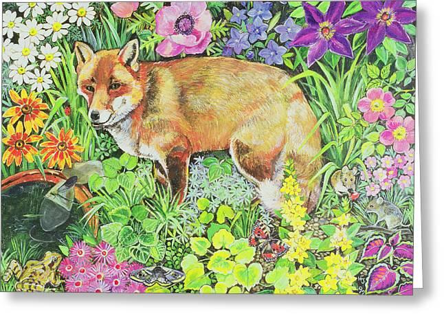 The Barnet Fox Greeting Card by Hilary Jones