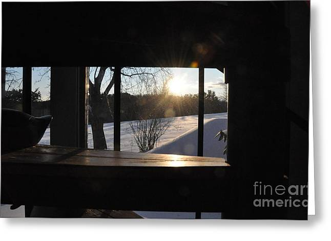 Greeting Card featuring the photograph The Basement Window by John Black