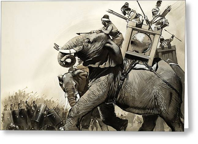 The Battle Of Zama In 202 Bc Greeting Card by Angus McBride