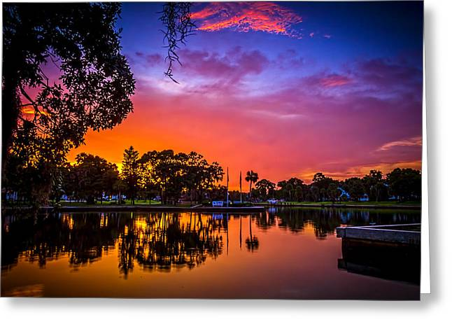 The Bayou Greeting Card by Marvin Spates