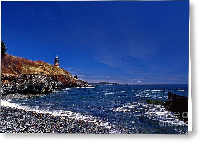 The Beach At West Quoddy Greeting Card by Skip Willits